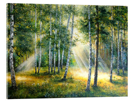 Acrylic glass  Sunlight in the green forest - Ludmilla Gittel