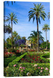 Canvas print  Gardens of the Museum of Seville