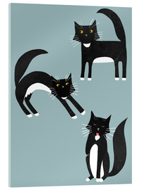 Acrylic print  Black cats with white paws - Nic Squirrell