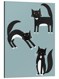 Nic Squirrell - Black and White Cats
