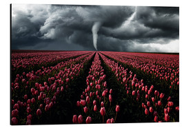 Alu-Dibond  Tornado and tulip field - Oliver Henze