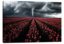 Canvas print  Tornado and tulip field - Oliver Henze