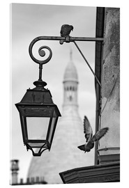 Acrylic glass  Montmartre pigeons with Sacre Coeur