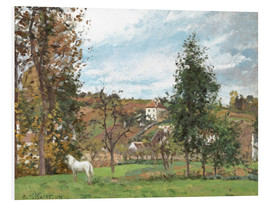 Forex  Landscape with a White Horse in a Meadow - Camille Pissarro