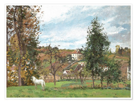 Premium poster Landscape with a White Horse in a Meadow