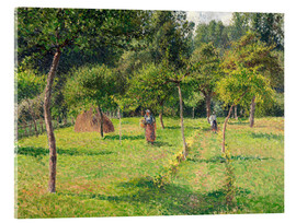 Acrylic print  Orchard in Éragny - Camille Pissarro
