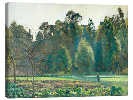 Canvas print  The cabbage field, Pontoise - Camille Pissarro