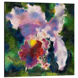 Alu-Dibond  Orchid on a green background - Augusto Giacometti