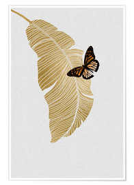 Premium poster Butterfly & Palm