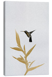 Canvas print  Hummingbird & flower II - Orara Studio
