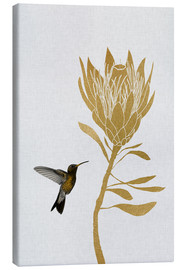 Canvas  Hummingbird & Flower I - Orara Studio
