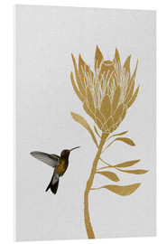 Foam board print  Hummingbird & flower I - Orara Studio
