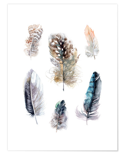 Premium poster Feathers collection