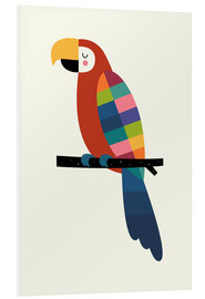Andy Westface - Rainbow Parrot