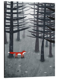 Aluminium print  The fox and the forest - Nic Squirrell