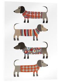 Acrylic print  Sausage Dogs in Sweaters - Nic Squirrell