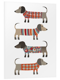 Forex  Sausage Dogs in Sweaters - Nic Squirrell