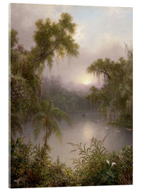 Acrylic print  South American River - Martin Johnson Heade