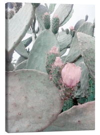 Canvas  pink cactus flower - Emanuela Carratoni