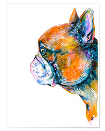 Premium poster Red Fawn Frenchie
