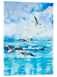 Acrylic glass  Black headed Seagulls At Seven Seas Beach - Zaira Dzhaubaeva