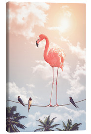 Canvas print  Flamingo and Friends - Jonas Loose