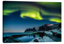 Canvas print  Aurora Borealis above the island of Senja (Northern Norway) - Sascha Kilmer