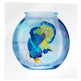 Acrylic glass  Fish in the glass - Goed Blauw