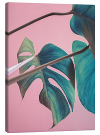 Canvas print  Sweet pink monstera leaves - Emanuela Carratoni