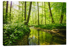Canvas print  Fresh green forest - Oliver Henze
