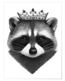 Premium poster King raccoon