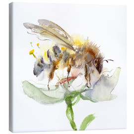 Canvas print  Honey bee - Verbrugge Watercolor