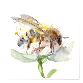 Poster  Honey bee - Verbrugge Watercolor