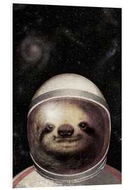 Foam board print  Space Sloth - Eric Fan