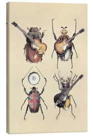 Canvas print  Meet the Beetles - Eric Fan