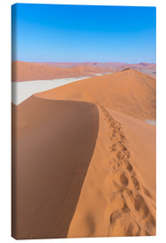 Canvas print  Sand dunes and blue sky at Sossusvlei, Namib desert, Namibia - Fabio Lamanna
