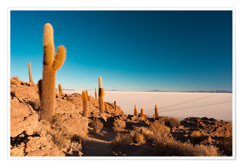 Premium poster Isla Incahuasi and Uyuni Salt Flat at sunrise, travel destination in Bolivia.