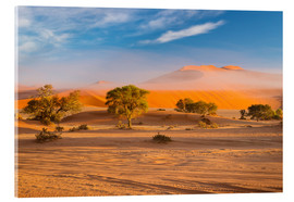 Acrylic print  Morning mist over sand dunes and Acacia trees at Sossusvlei, Namibia - Fabio Lamanna