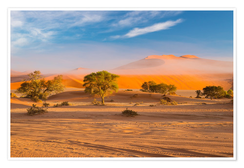 Premium poster Morning mist over sand dunes and Acacia trees at Sossusvlei, Namibia