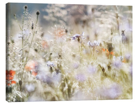 Canvas print  Summer meadow in the morning - Lichtspielart