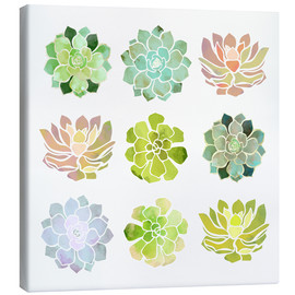 Canvas  Spring Succulents - SpaceFrog Designs