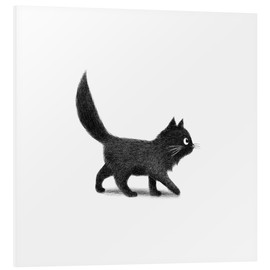 Foam board print  Little black cat - Terry Fan