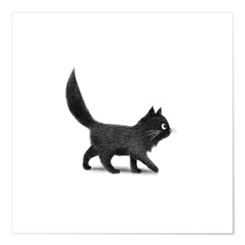 Poster  Little black cat - Terry Fan