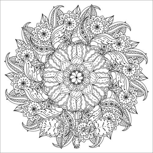 Colouring posters Floral mandala