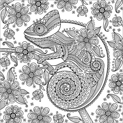 Colouring posters Fantastic chameleon