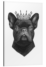 Aluminium print  King French bulldog - Valeriya Korenkova