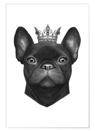 Premium poster  Queen French Bulldog - Valeriya Korenkova