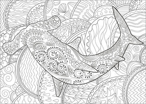 Colouring poster Hammerhead shark