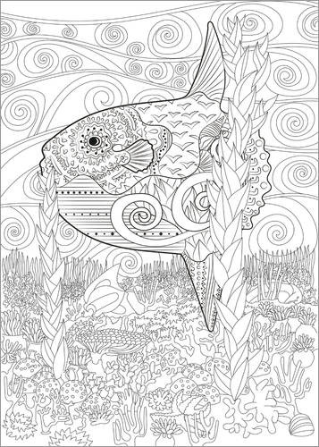 Colouring poster Sunfish