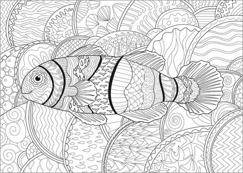 Colouring poster Clownfish